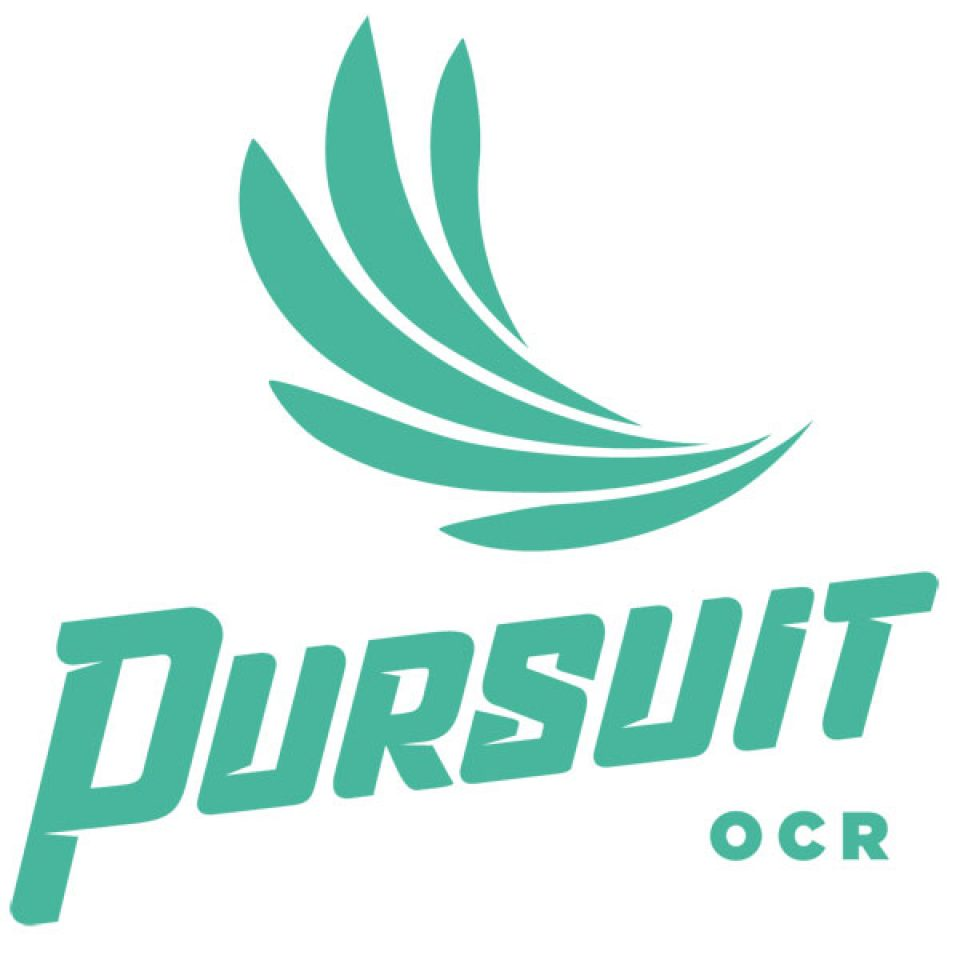 Image result for Pursuit OCR
